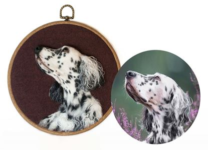 Picture of  English setter RUNO ART